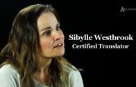 How Translators Interpret Individuals That Don't Make Sense